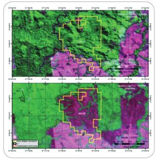 Brazil DETER deforestation monitoring by satellite